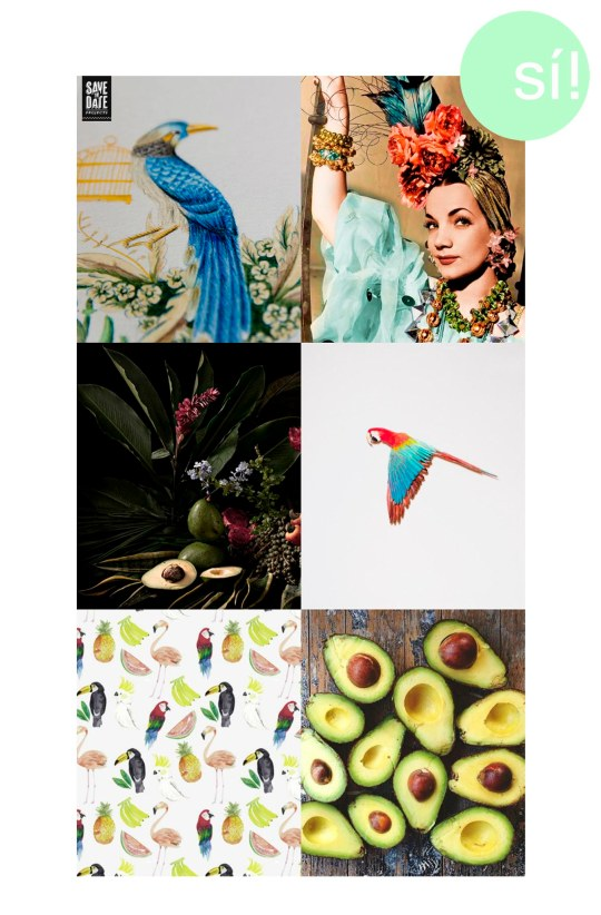 1.savethedateprojects.com, 2. Pinterest, 3. trendland.com, 4. veticaultralight.tumbl.com, 5. Pinterest, 6. thenletitbe.tumblr.com