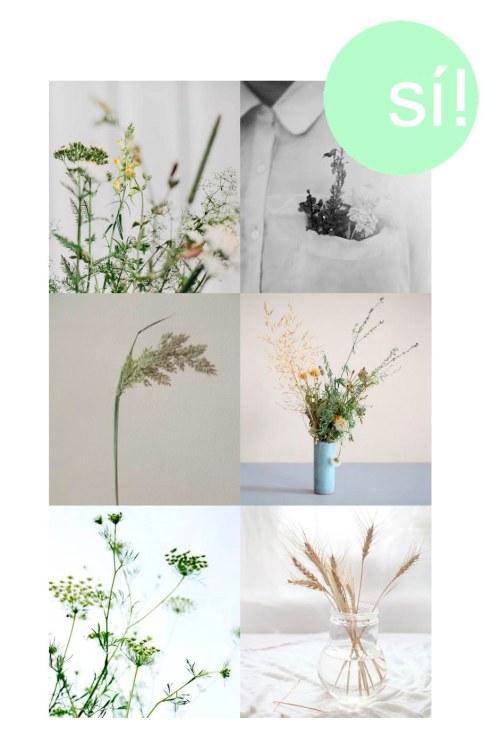 1 y 2. Pinterest, 3. hairiku.tumblr com, 4. Tall Yunomi Vessel, 5. Pinterest, 6. verdadedesabor.blogspot.ca