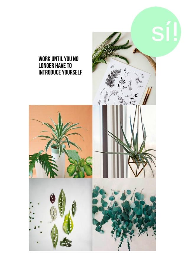 verde si al si quiero